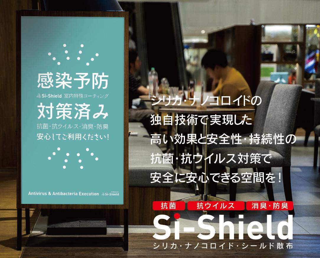 Si-Shieldの解説と対策済みイメージ